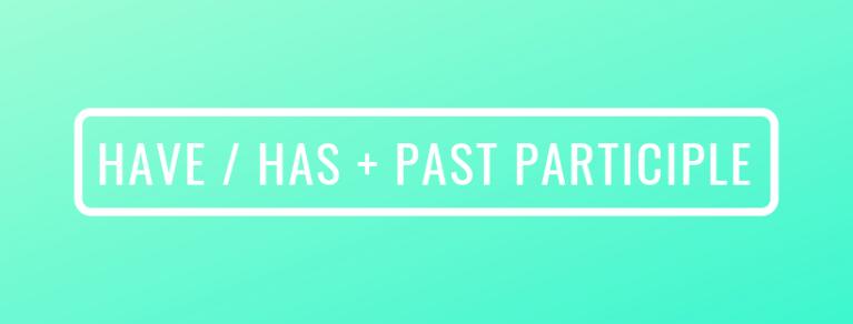 have has past part